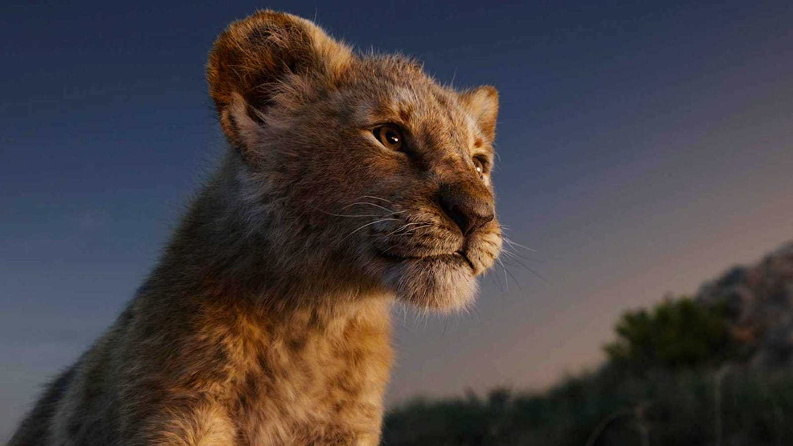 Recensione del live action del Re Leone, remake live di Jon Favreau